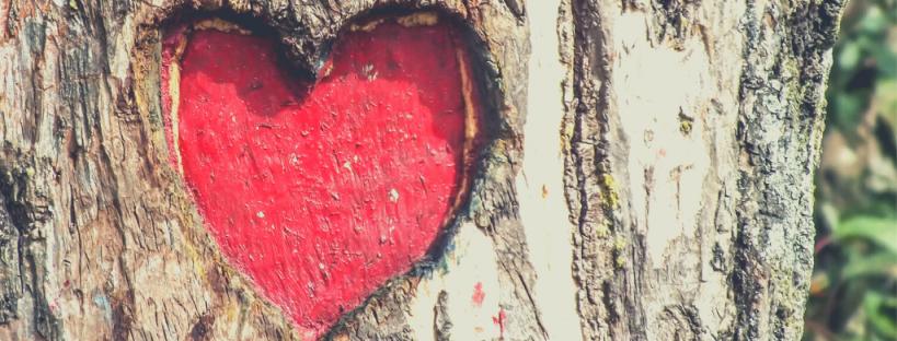 february heart